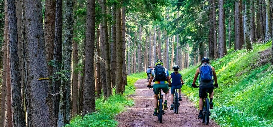 Pedelec bicikli lista